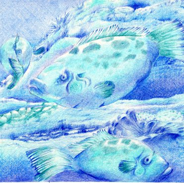 peixe-no-fundo-do-mar