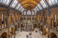 museu-historia-natural-londres