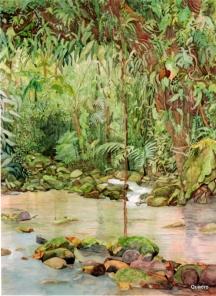 Reserva Natural de Salto Morato